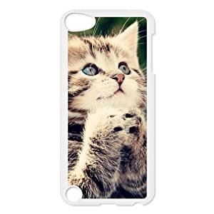 Cute Adorable Ginger Kitten Cat Make A Vow Case for iPod touch 5