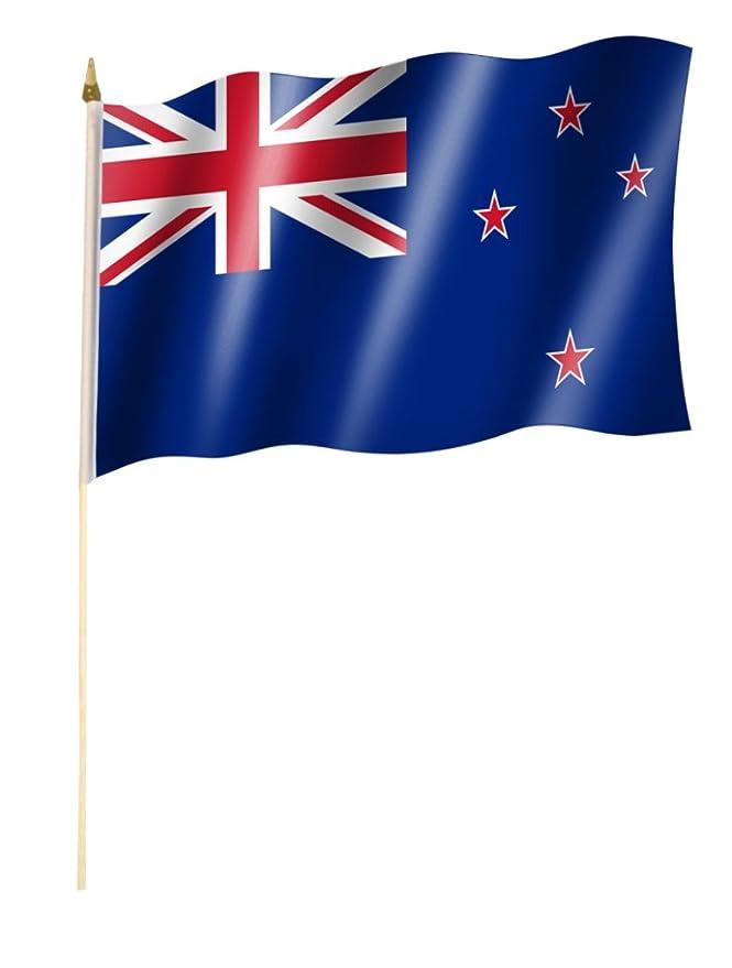 30 x 45 cm mit ca 60cm Stab//Stock Stockflagge//Stockfahne CHILE Flagge//Fahne ca
