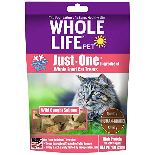 Whole Life Pet Healthy Cat Treats, Human-Grade Wild-Caught Salmon, Protein Rich for Training, Picky Eaters, Digestion, Weight Control, Made in the USA, 1 Ounce