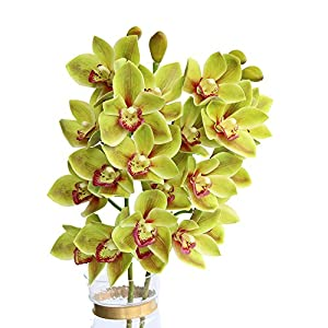 Htmeing 2pcs 10 Heads Artificial Cymbidium Orchids Flowers Plant Branches Stems for Wedding Centerpieces Floral Arrangement 52