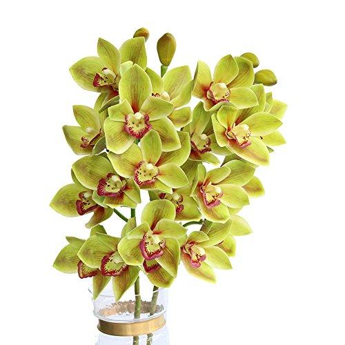 Htmeing 2pcs 10 Heads Artificial Cymbidium Orchids Flowers Plant Branches Stems for Wedding Centerpieces Floral Arrangement (Green)