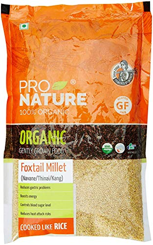 Pro Nature 100% Organic Foxtail Millet, 500 g by Hindustan Mart