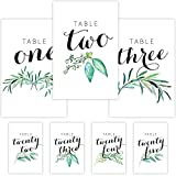 Pearl Theory Eucalyptus Table Card Numbers for Wedding Receptions and Party Events, Set 1-25