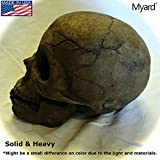 Myard Fireproof Human Fire Pit Skull Gas Log for NG, LP Wood Fireplace, Firepit, Campfire, Halloween Decor, Barbecue (Brown, 1pk)