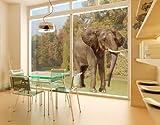 Window Sticker Walking Elephant window film window tattoo glass sticker window art window décor window decoration window picture Dimensions: 56.7 x 50.8 inches