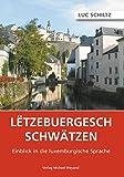 Letzebuergesch schwätzen: Einblick in die luxemburgische Sprache