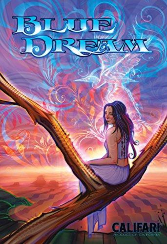 Blue Dream - Vivid Color Strain Art Wall Poster, Decor for a Home, Dorm, Dispensary, or Smoke Shop - 13