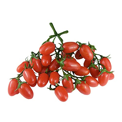GuCra Artificial Fruit Vegetable, Cherry Tomato 2 Clusters Pack, Fruit Vegetable Model, Mini Tomato (Red-T) ()