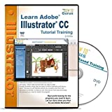 Adobe Illustrator CC Tutorial Training on 2 DVDs