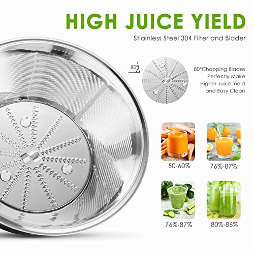 The 8 best juice extractors under 100