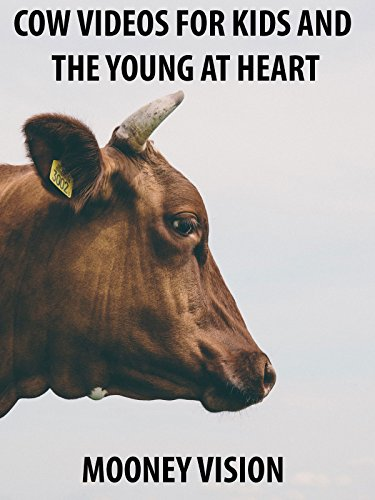 Cow Videos For Kids And The Young And Heart