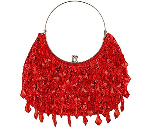 etro Clutches Purses Evening Bags Dinner Handbag Shoulder Bag Seed Beaded Sequin Tassel Flower for Wedding Bridal Prom Party (Red) ()