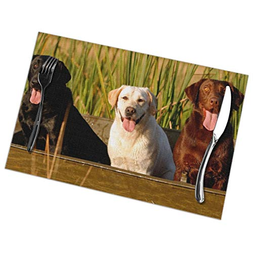 Placemats For Dining Table, Heat Insulation Stain Resistant Table Mat Set Of 6 Non Slip Washable Tray Mat Durable Place Mats For Kitchen Dining Room Table Decoration - Labrador Dogs In The Boat -