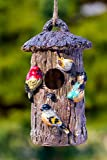 Oak Tree Decorative Hand-Painted Bird House Review