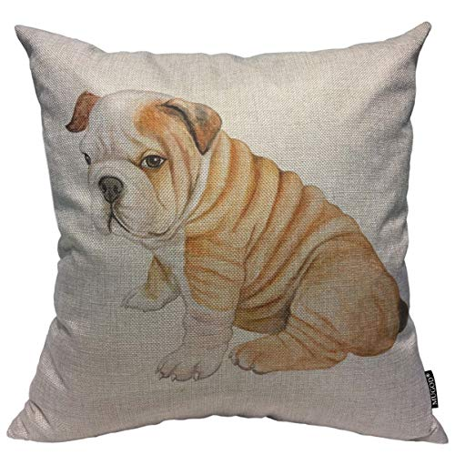 Mugod Cute Dog Throw Pillow Cover Puppy English Bulldog Isolated on White Background Decorative Square Pillow Case for Home Bedroom Living Room Cushion Cover 18x18 Inch (French Bulldog Mixed With English Bulldog Puppies)