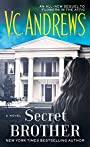 Secret Brother (The Diaries Series Book 3)