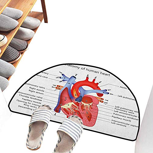 Axbkl Front Door Mat Large Outdoor Indoor Educational Medical Structure of The Hearts Human Body Anatomy Organ Veins Cardiology All Season General W30 xL18 Coral Red Blue