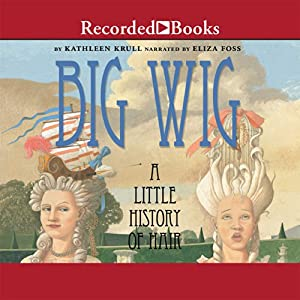Big Wig Audiobook