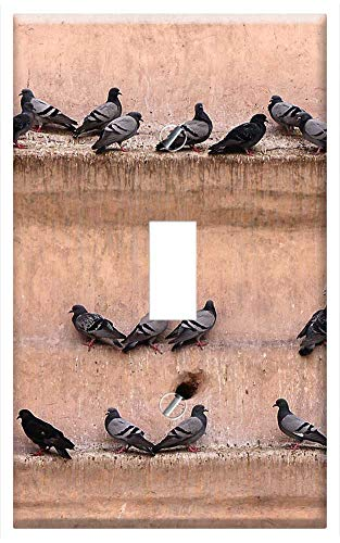 Switch Plate Single Toggle - Pigeons Wall Gathered Bird Lines Castle Fortress