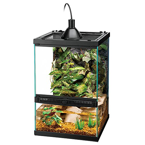 Zilla Tropical Reptile Vertical Starter Kit with Mini Halogen Lighting - Glass Reptile Terrarium