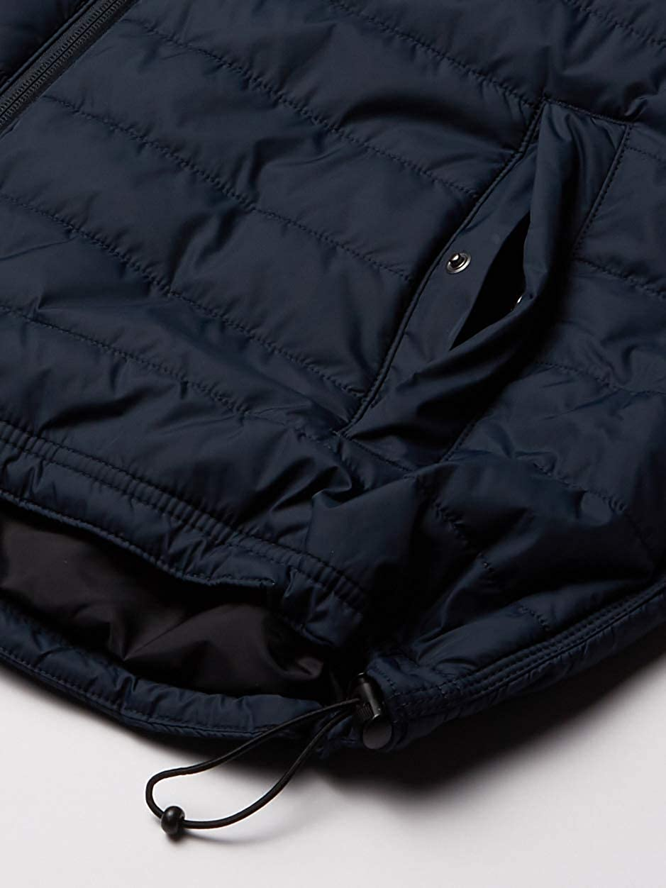 Carhartt Men's Big & Tall Gilliam Vest: Clothing