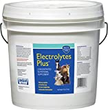 633011 Electrolytes Plus Multi-Species Supplement , 10 lb