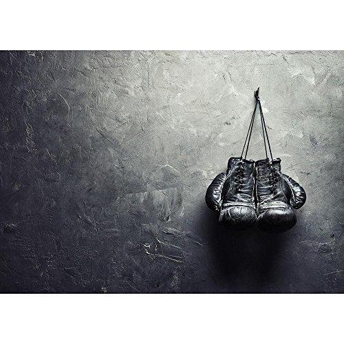 (Pitaara Box Old Boxing Gloves Hang On Nail Canvas Painting MDF Frame 22.6 X)