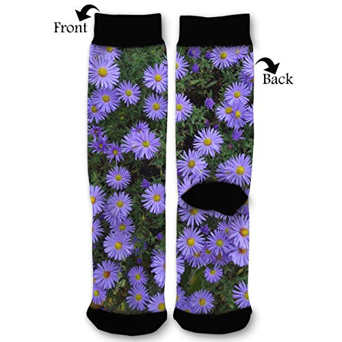 Purple Asters Flowers Bed Socks Funny Fashion Novelty Advanced Moisture Wicking Sport Compression Sock for Man Women ()