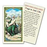 Prayer to Saint Luke the Beloved Physician Laminated Holy Card Blessed By Pope Francis