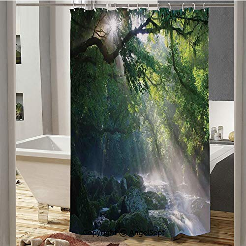 SfeatruCurtai Stream in The Jungle Stones Under Shadows of Trees Sunlight Mother Earth Theme Custom Shower Curtain(72
