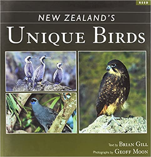 New Zealand's Unique Birds