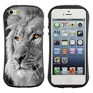 "Pulsar iFace Series Tpu silicona Carcasa Funda Case para Apple iPhone SE / iPhone 5 / iPhone 5S , White Lion King Africa Negro Naranja"""