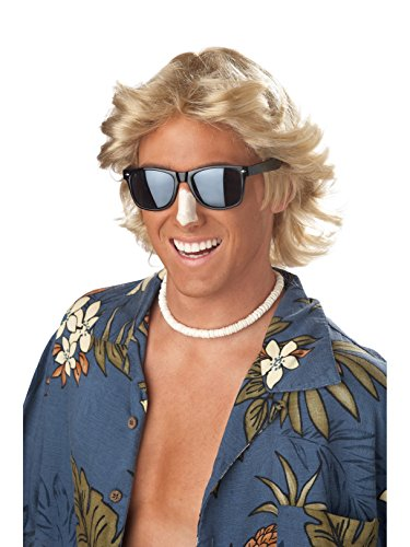 California Costumes Men's 70's Feathered Hair Wig, Blonde, One Size