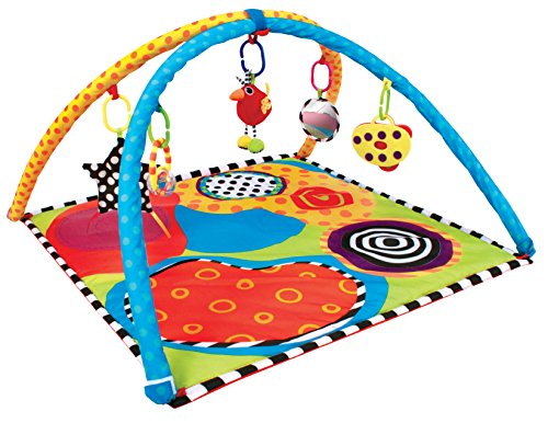 Sassy Developmental Playmat by Sassy