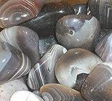 Grey Agate Tumblestones