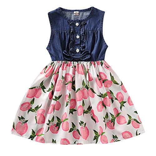 - Little Baby Girls Denim Floral Fruit Print Sleeveless Skirt Dresses (Pink, 3-4 T)