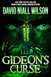 img - for Gideon's Curse: A Novel of Old Mill, NC book / textbook / text book