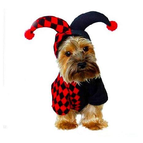 TYJY Lindo Otoño Invierno Mascota Gato Ropa para Perros Sudaderas con Capucha De Halloween Cosplay Payaso