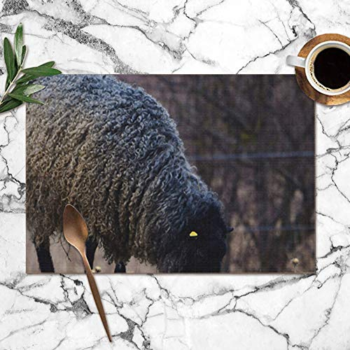 "Gotland Sheep On Meadow Typical Swedish Animals Wildlife Animal Washable Placemats for Dining Table Double Fabric Printing Polyester Place Mats for Kitchen Table Set of 6 Table Mat 12""X18"""