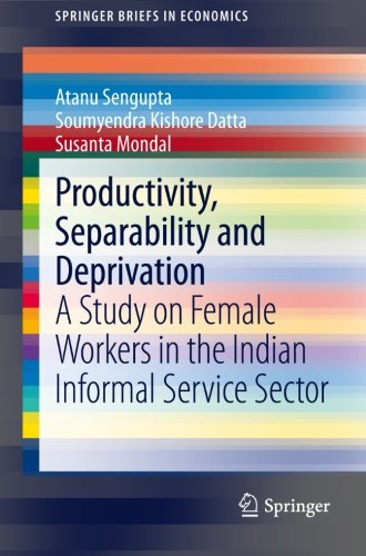 (Productivity, Separability and Deprivation: A Study on Female Workers in the Indian Informal Service Sector (SpringerBriefs in)