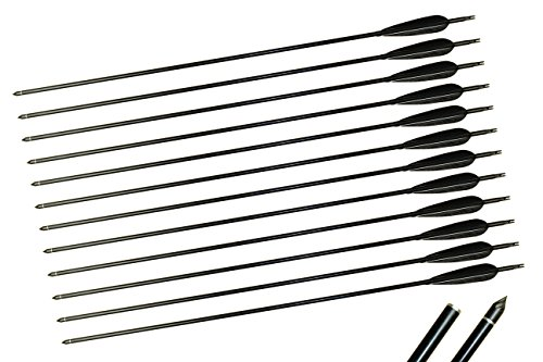 TTAD 32 inches Aluminum Arrows Hunting Turkey Feather Arrows Broadheads Spine 450 For Recurve Compound bow(Pack (Aluminum Turkey)