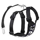 PAWABOO Dog Safety Vest Harness, Pet Dog Adjustable Car Safety Mesh Harness Travel Strap Vest with Car Seat Belt Lead Clip, Suitable for 11 lb-33 lb Dogs, Navy BLUE & WHITE