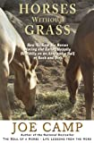 img - for Horses Without Grass: How We Kept Six Horses Moving and eating Happily Healthily on an Acre and a Half of Rock and Dirt book / textbook / text book