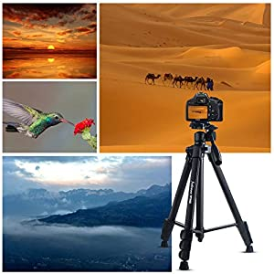 "Sobrovo Camera Monopod 70"" Removable Aluminum Telescoping Camera Tripod With Pan-Head For Canon Nikon DSLR DV by Sobrovo"