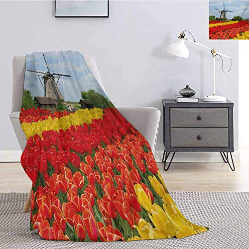 Luoiaax Windmill Fuzzy Blankets King Size Rows of Colorful Tulips in Northern Europe Rural Garden Bed Picturesque Summer Comfortable Soft Warm Large Blanket W51 x L60 Inch Multicolor