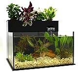 Fin to Flower Aquaponic Aquarium - Midsize System B (Black)