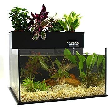 Eco cycle aquaponics kit with led light pet for Aquaponics aquarium