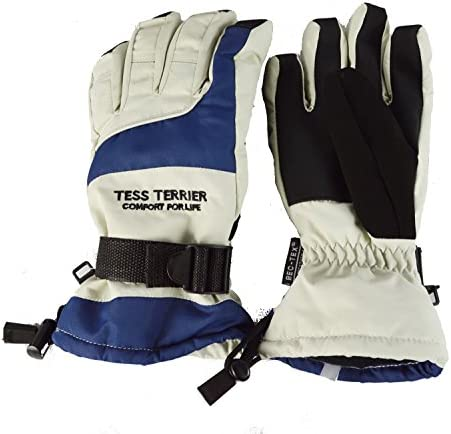 TESS TERRIER(テステリア) 防水 防風 防寒 スキーグローブ レディース5本指 TTS-115 GR グレー