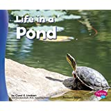 Life in a Pond (Living in a Biome)