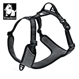 TRUE LOVE Dog Harness Outdoor Adventure II Reflective Vest 2 Leash Attachments Matching Leash Collar Available TLH6071 (Black, M: Chest 56-68cm/22-27in For Sale
